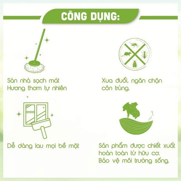 Dung Dịch Lau Sàn An An